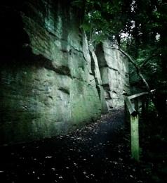 Wall by the Ouse Burn, Jesmond Dene