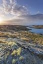 Hebridean dawn by pink