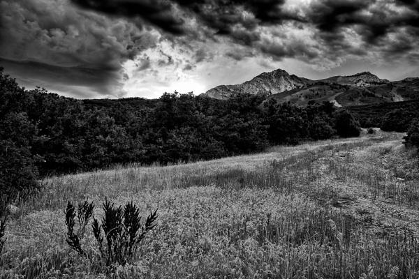 Black Mountains by mlseawell