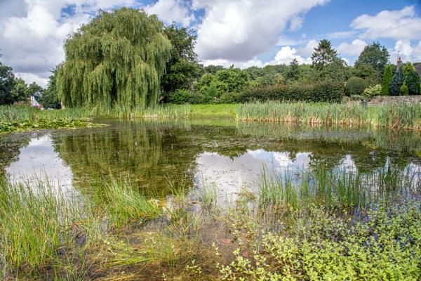 Village Pond by Graysshootin