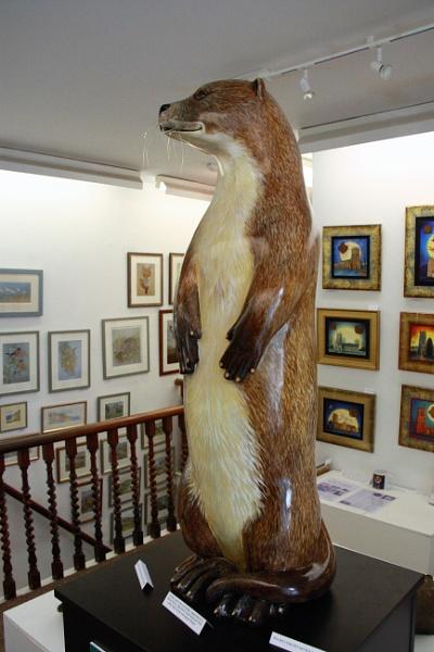 Devon Otter by RobMacormac