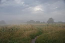 misty way