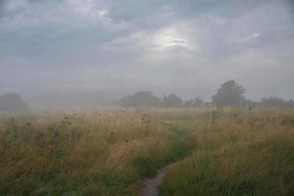 misty way by alfpics