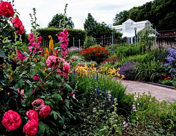 British Summer Garden by Janetdinah