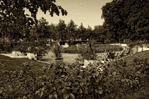 a quiet garden by leo_nid