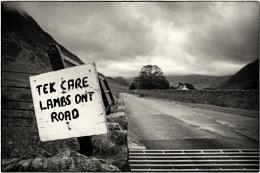 Cumbrian grit