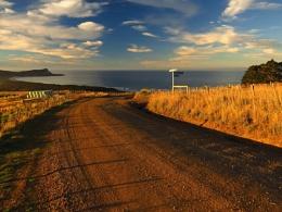 Cape Saunders 2