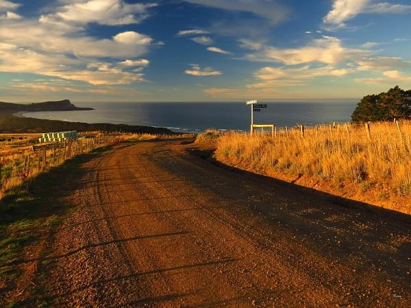 Cape Saunders 2 by DevilsAdvocate