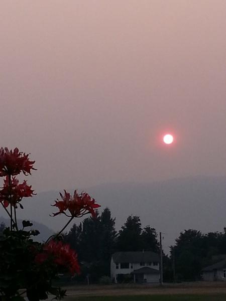Smoky Sunsett by Friendlyguy
