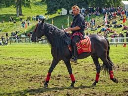 Horse display rider