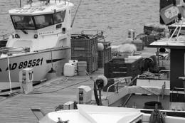 Photo : Fishing Industry