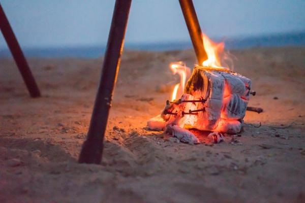 The burning wood by Sillu