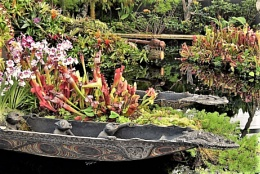 Canoes and things