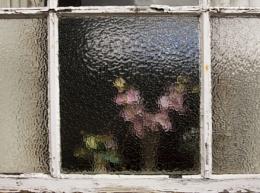 The Great British Bathroom window