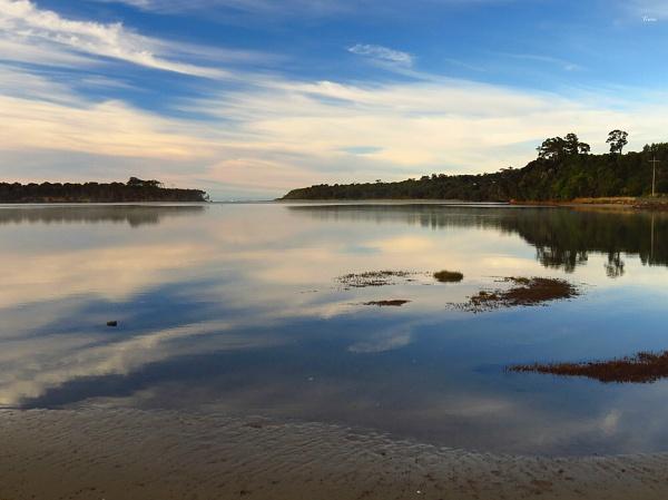 Tahakopa River 2 by DevilsAdvocate