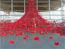 Poppies : Weeping Window. by franken