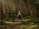 Heading Home by Daisymaye