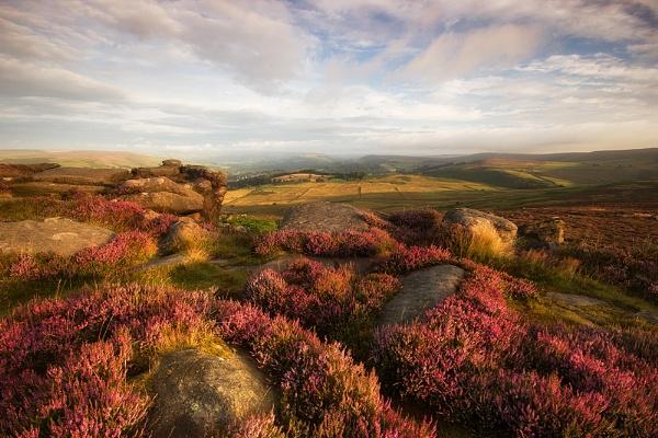 Peak Flora by BIGRY1
