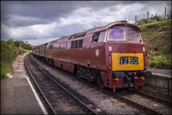 D1010 Western Campaigner by bwlchmawr