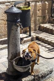 Italy_Apulia_Polignano a Mare. Thirst