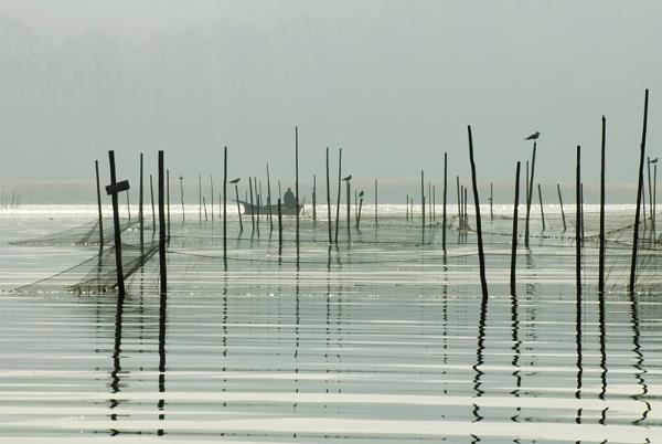 Morning Fishing by norwag