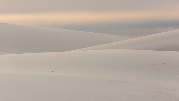 Subtle tones of White Sands by rontear