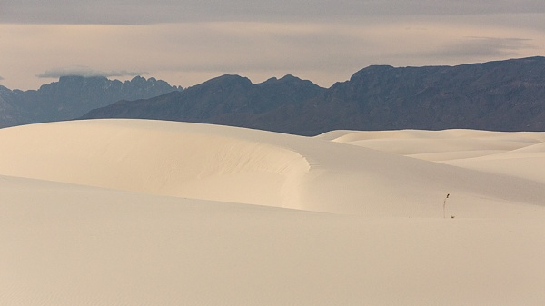 Tones of White Sands by rontear