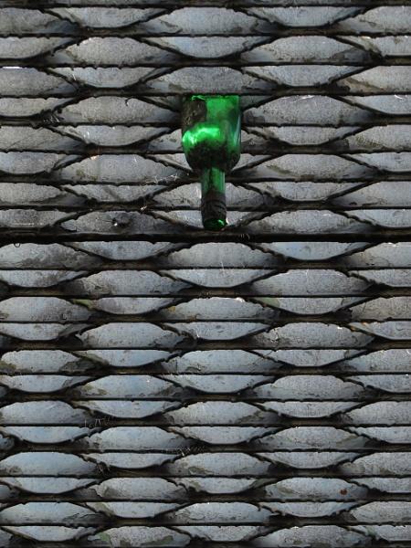 One Green Bottle by ericfaragh