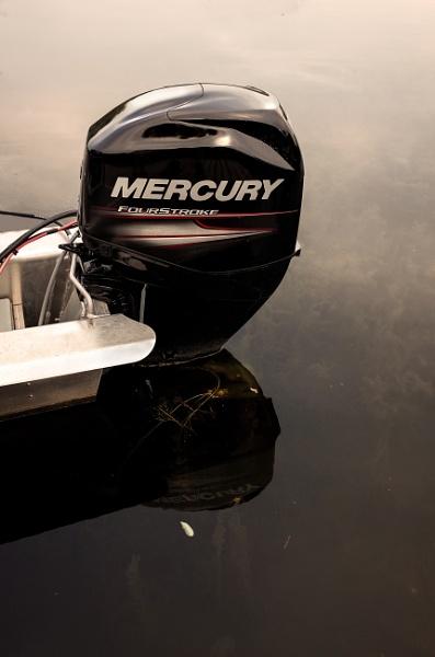 Mercury by banehawi