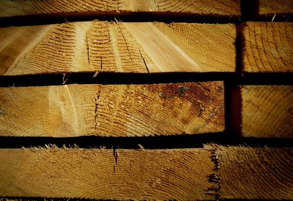 End Grain Set by Savvas511