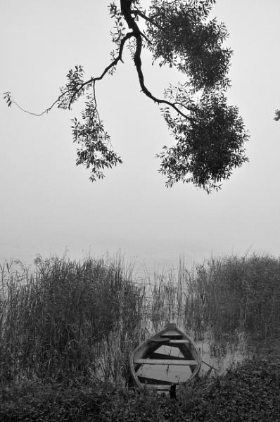 Boat in fog by Zenonas