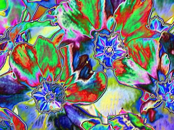 Enamel flowers by brusque
