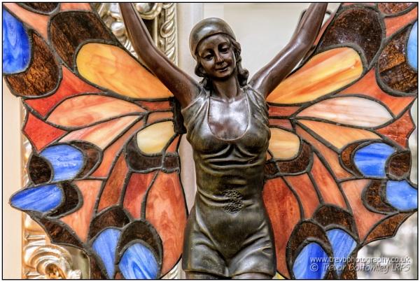 Butterfly Lady by TrevBatWCC