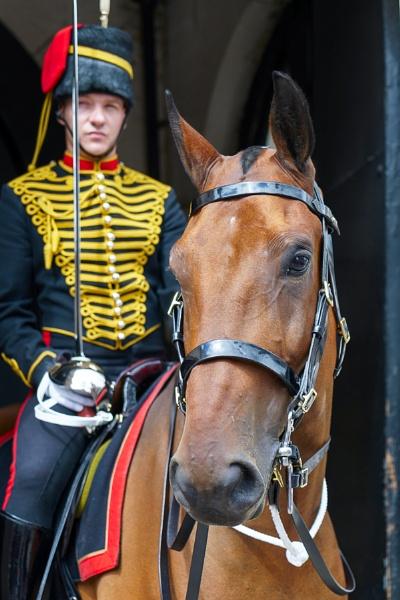 LONDON - JULY 30 : Kings Troop Royal Horse Artillery in Whitehal by Phil_Bird