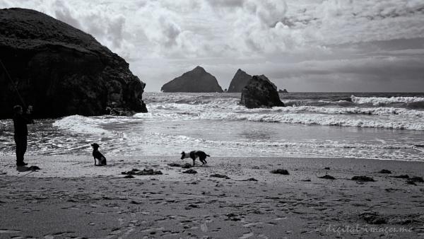 Beach Angler by Alan_Baseley