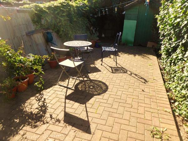 My garden Greens !!! by Chinga
