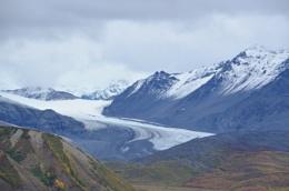 Fall Colors of Glacier