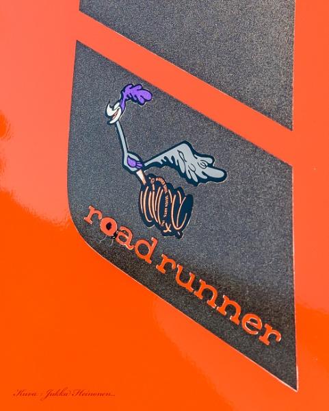 Road Runner. by kuvailija