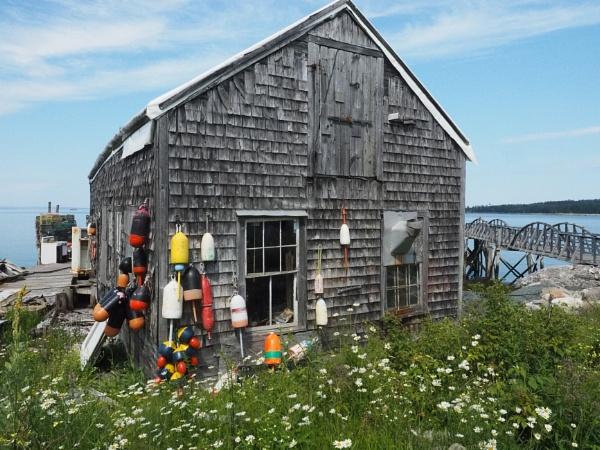 Traveling in Maine #18 by handlerstudio