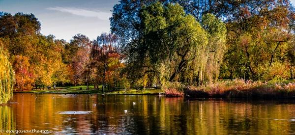 Autumn colours by Pianoman