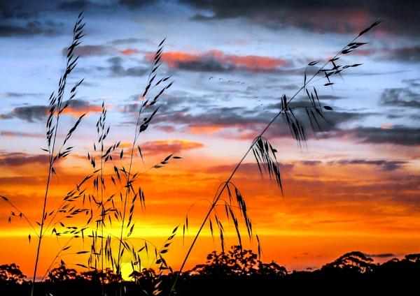 Kimberley Sunset by Prizm