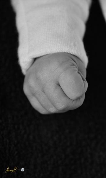 Baby Fist by jb_127
