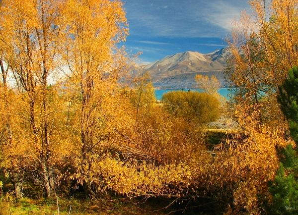 Lake Pukaki 52 by DevilsAdvocate