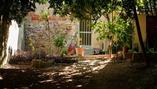 Cyprus Garden by scrimmy