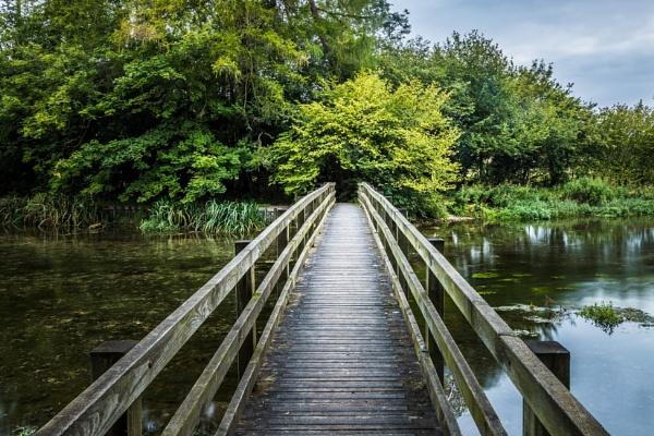 Bridge by MonochromeTear
