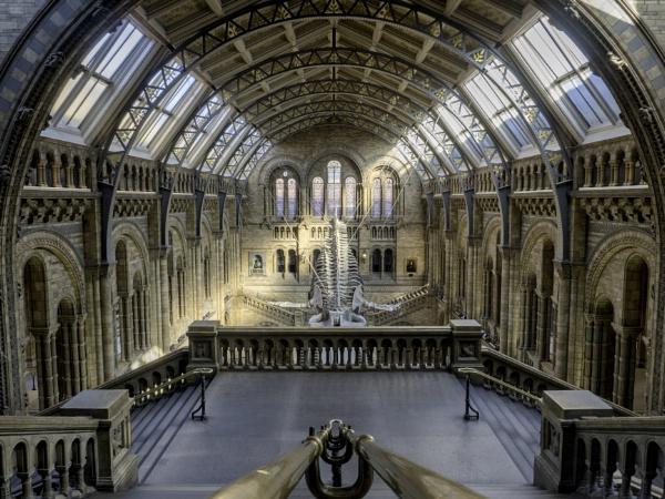 Natural History Museum by CraigWalker