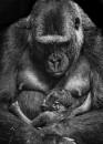 Mum needs by puma00065