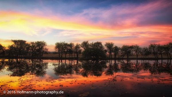magical sunrise Marglu Billabong  Kimberley WA - by drbird