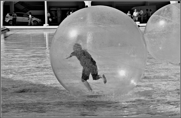 *** Water Sport *** by Spkr51
