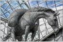 Equus by TrevBatWCC